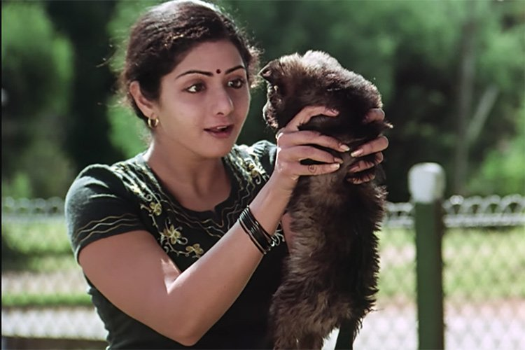 Sridevi in Sadma Bombay Balloon